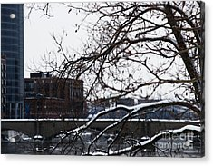 The River Divide Acrylic Print by Linda Shafer