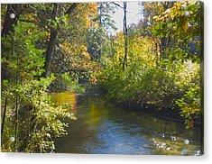 The River  Acrylic Print by Sheryl Thomas