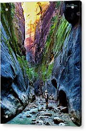 The Riverbend Acrylic Print