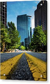The Road Ahead Acrylic Print