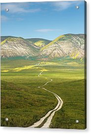 The Road Down Acrylic Print by Joseph Smith