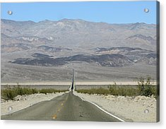 Acrylic Print featuring the photograph The Road Less Traveled by Brandy Little