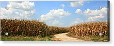 Acrylic Print featuring the photograph The Road Less Traveled by David Dunham