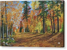 Acrylic Print featuring the painting The Road Less Traveled by Ken Ahlering