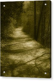 The Road To . . .  Acrylic Print