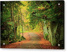 The Road To The Mill  Acrylic Print