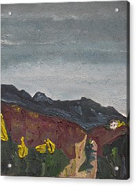 The Road To The Mountain Acrylic Print by Francois Fournier