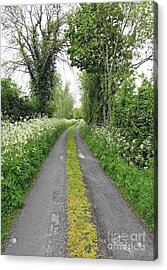 The Road To The Wood Acrylic Print