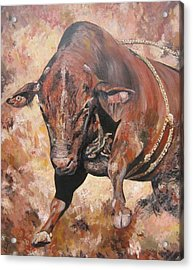 The Rodeo Bull Acrylic Print by Leonie Bell