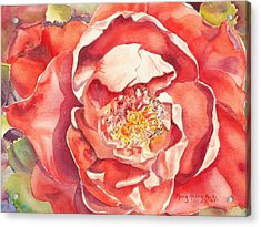 Acrylic Print featuring the painting The Rose by Mary Haley-Rocks