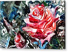 The Rose Acrylic Print by Mindy Newman