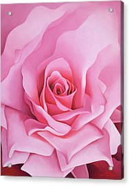 The Rose Acrylic Print by Myung-Bo Sim
