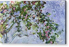 The Roses Acrylic Print by Claude Monet