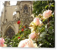 The Roses Of Notre Dame Acrylic Print by John Julio