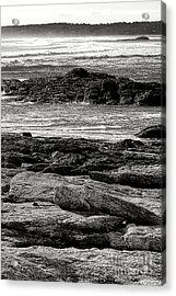 The Rugged Coast Of Maine Acrylic Print by Olivier Le Queinec