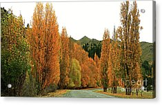 The Russet Tones Of Fall Acrylic Print