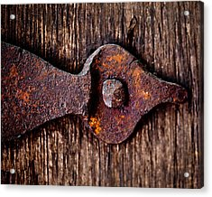 The Rusty Hinge Acrylic Print by Lisa Russo