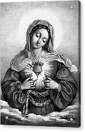 The Sacred Heart Of Mary Acrylic Print by French School