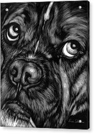 The Sad Boxer Acrylic Print by Enzie Shahmiri