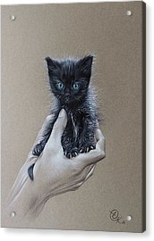 Acrylic Print featuring the drawing The Safest Place To Be by Elena Kolotusha