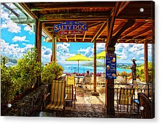 The Salty Dog Cafe St. Thomas Acrylic Print