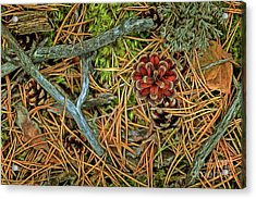 The Scent Of Pine Forest II Acrylic Print by Veikko Suikkanen