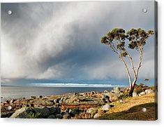The Sea And The Sky Acrylic Print