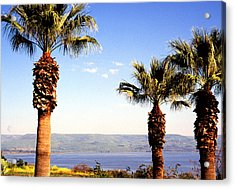 The Sea Of Galilee From The Mount Of The Beatitudes Acrylic Print by Thomas R Fletcher