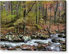 The Season Flows Along Acrylic Print by Michael Eingle