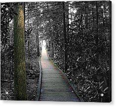 The Secret Garden Acrylic Print by John Mueller