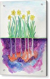 The Secret Life Of Daffodils Acrylic Print