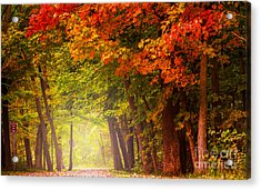 Acrylic Print featuring the photograph The Secret Place by Rima Biswas