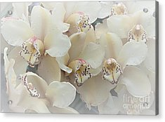 The Secret To Orchids Acrylic Print by Sherry Hallemeier