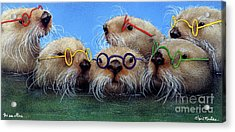 The See Otters... Acrylic Print