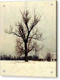 Acrylic Print featuring the photograph The Sentinel - Lone Winter Tree by Janine Riley