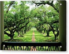 The Shade Of The Oak Tree Acrylic Print