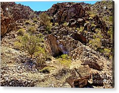 Acrylic Print featuring the photograph The Shafted Mine by Robert Bales