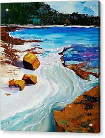 The Shallows Acrylic Print
