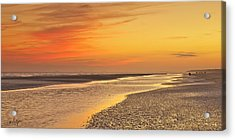The Shallows Acrylic Print by Phill Doherty