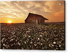 The Sharecropper Shack Acrylic Print