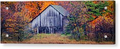 The Shed Acrylic Print