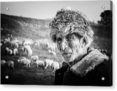 The Shepherd Acrylic Print