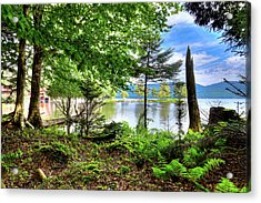 Acrylic Print featuring the photograph The Shore At Covewood by David Patterson