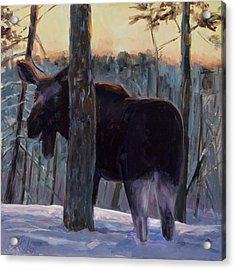Acrylic Print featuring the painting The Shy One by Billie Colson