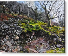 The Side Of The Valley Acrylic Print by Harry Robertson