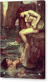 The Siren Acrylic Print by John William Waterhouse