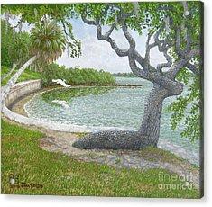 The Sitting Oak Tree Acrylic Print by Jim Soldo