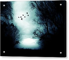 The Skies Hold Many Secrets Known Only To A Few Acrylic Print by Michele Carter