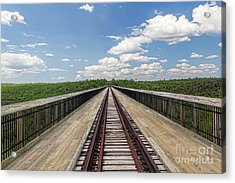 The Skywalk Acrylic Print