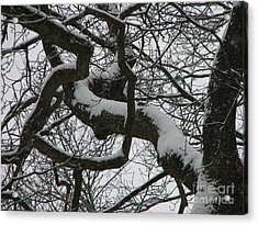 The Skyward Pathway In Snow Acrylic Print by Roxy Riou